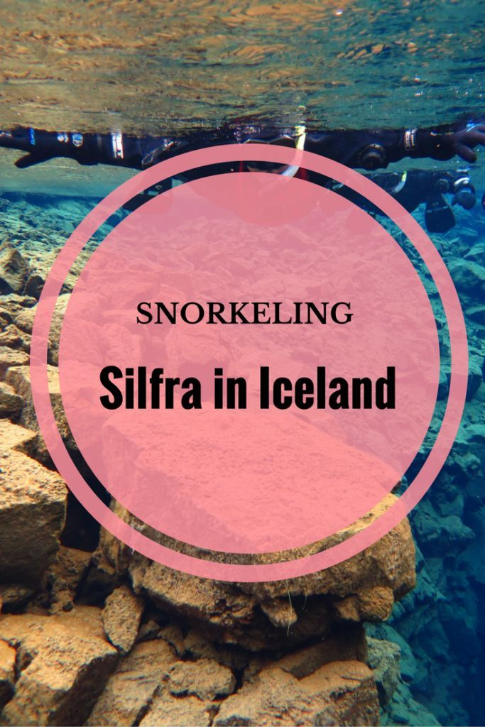 Snorkeling the icy waters of Silfra in Iceland.  via @thethoughtcard