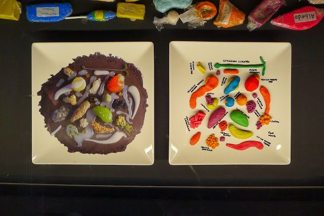 KARL's BLOG tapas: spanish design for food