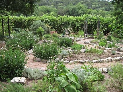 Alma de Mujer medicinal garden