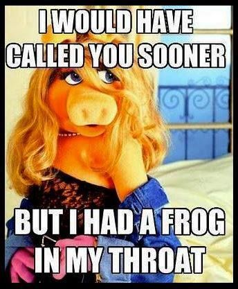Funny miss piggy meme - http://jokideo.com/funny-miss-piggy-meme/