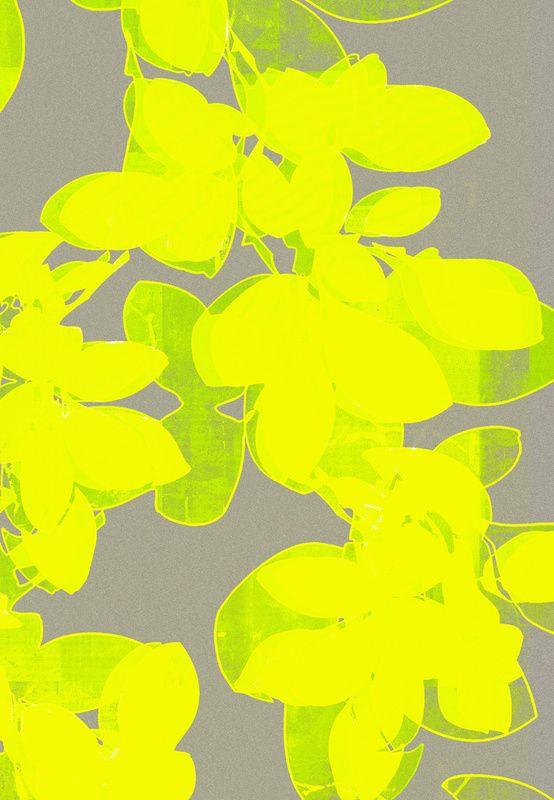 garima dhawan neon flower pattern