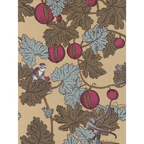 Buy Cole & Son Frutta Probito Wallpaper Online at johnlewis.com