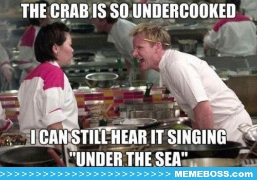 The Gordon Ramsay Meme – A collection of the best Gordon Ramsay Insults
