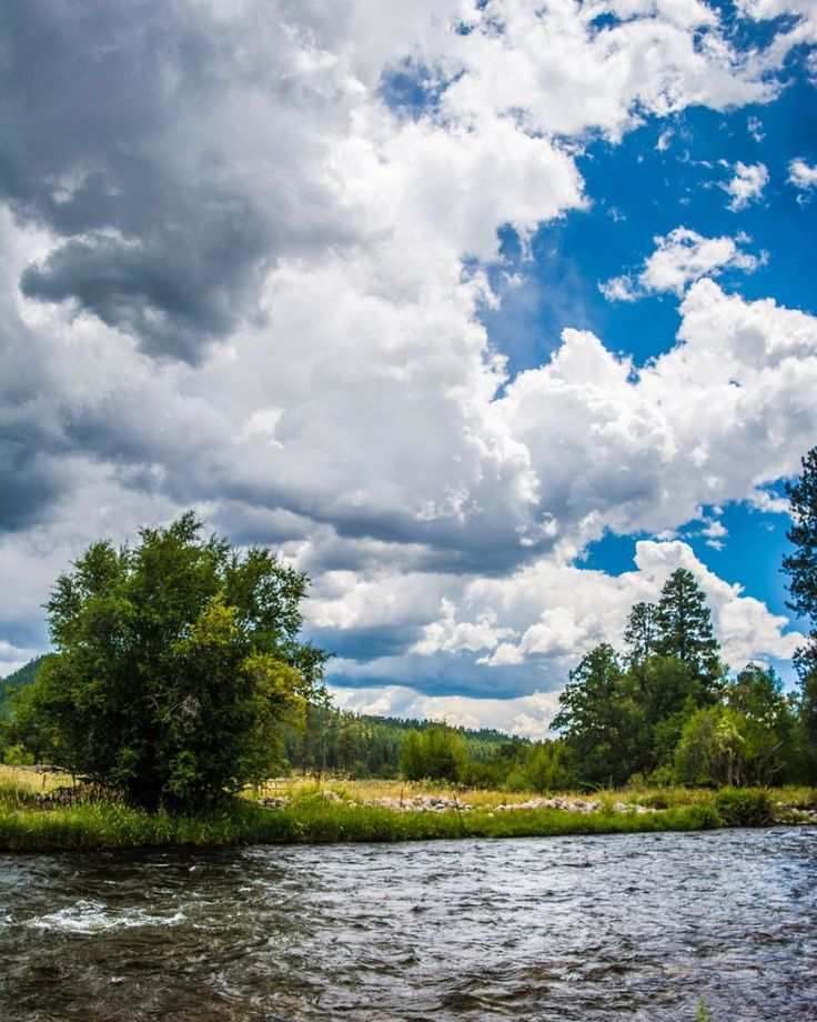 77 best Local Water images on Pinterest | Fishing, Fly fishing and ...