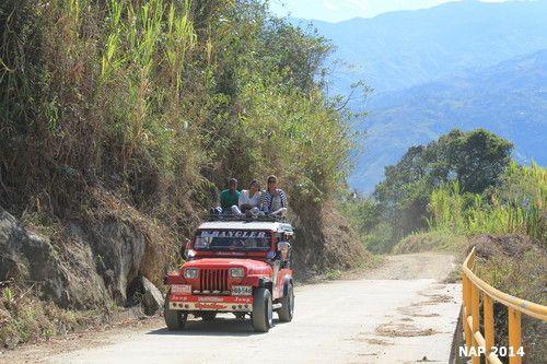 Atrévete a montar en el #Tradicional #Jeep #Jeepwillys del #PaisajeCulturalCafetero y siente la adrenalina de recorrer las #Montañas de #Cafe de #Colombia