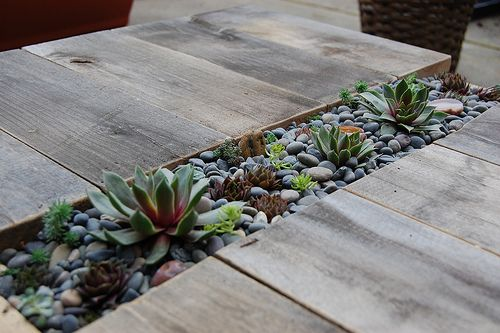 outdoor table with built in succulent garden