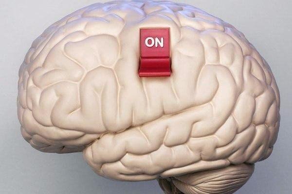мозг который пуст картинки сбываются