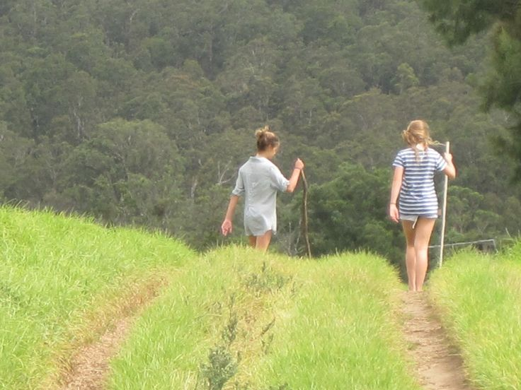 My goddaughter, Sabrina (on the right), and her friend Georgie. The girls came and stayed with me while I was writer-in-residence at Bundanon in NSW while I was writing the novel. Some of their stories wove their way into the book. The girls are walking down through the fields to swim in the river.