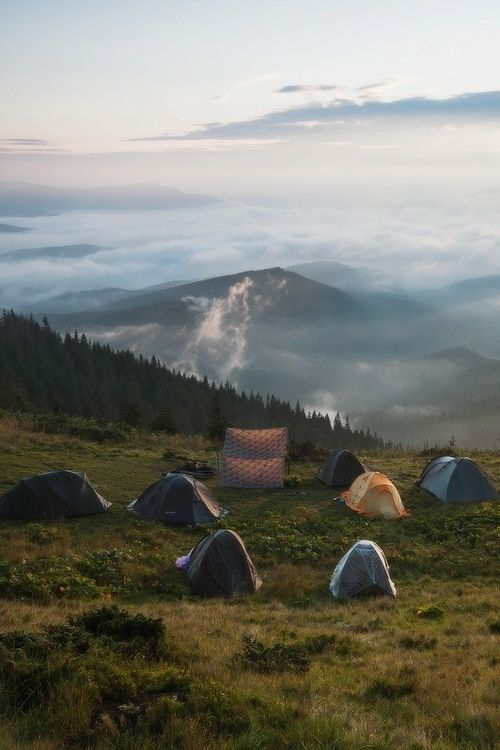 Tents in an open field. Hiking in the forest. Socal hiking, Appalachian trail, Pacific Crest trail, camping the woods.