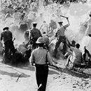 The Parsley Massacre was a slaughter of tens of thousands of Haitians by the Dominican Army. This slaughter took place between October 2 and October 8, 1937 in border areas with Afro-Haitians as the target. TheThe Parsley Massacre was a slaughter of tens of thousands of Haitians by the Dominican Army. This slaughter took place between October 2 and October 8, 1937 in border areas with Afro-Haitians as the target. The name of the event comes from eyewitness testimony of soldier's…