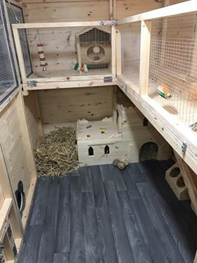 Inside Of a Huge Rabbit Shed.  Handmade By Boyles Pet Housing  (Boyles Pet Housing did not make the accessories in the photo)