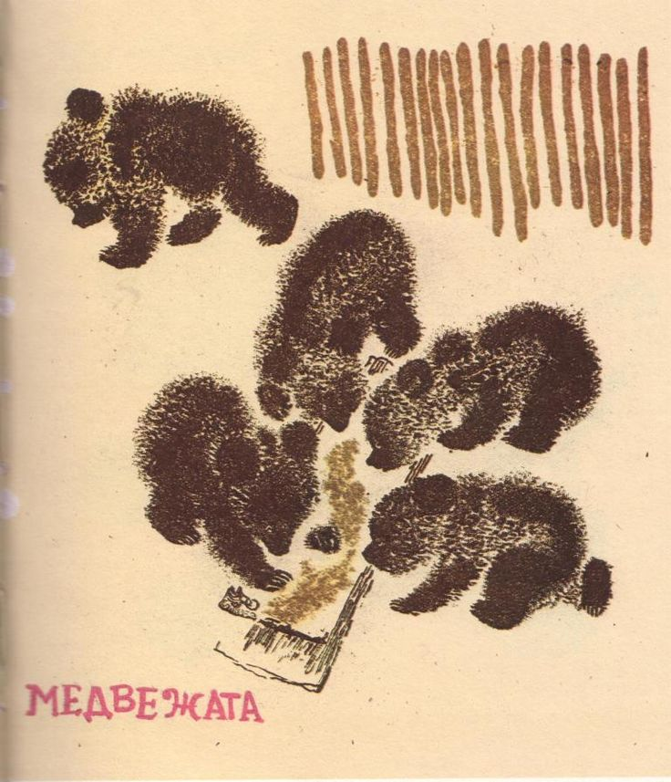 графика Е. Чарушин