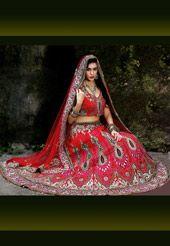 Light Red Net Lehenga Choli with Dupatta