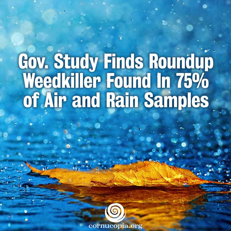 The GM farming system has made exposure to Roundup herbicide a daily fact of our existence, and according to the latest US Geological Survey study its probably in the air you are breathing. More here: http://www.cornucopia.org/2014/03/roundup-weedkiller-found-75-air-rain-samples-gov-study-finds #roundup #weeds #weedkiller