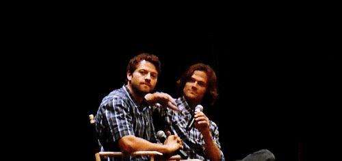 Misha, you dog