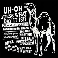 Geico Camel Hump Day T-Shirt (Mens)  ~~ I LOVE THIS COMMERCIAL!!