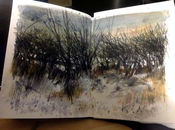 Vivian Blackburn, paintings prints and stuff: Hedges silhouetted agains the snow, winter light: watercolour and Derwent tinted charcoal pencils in Stillmand and Birn Beta Hardback sketchbook