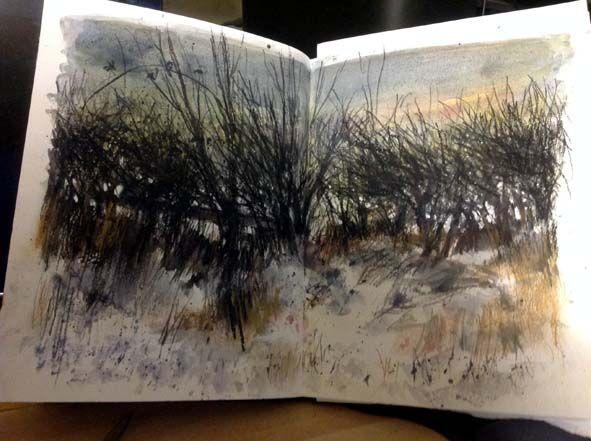 kurt jackson sketchbook - Google Search