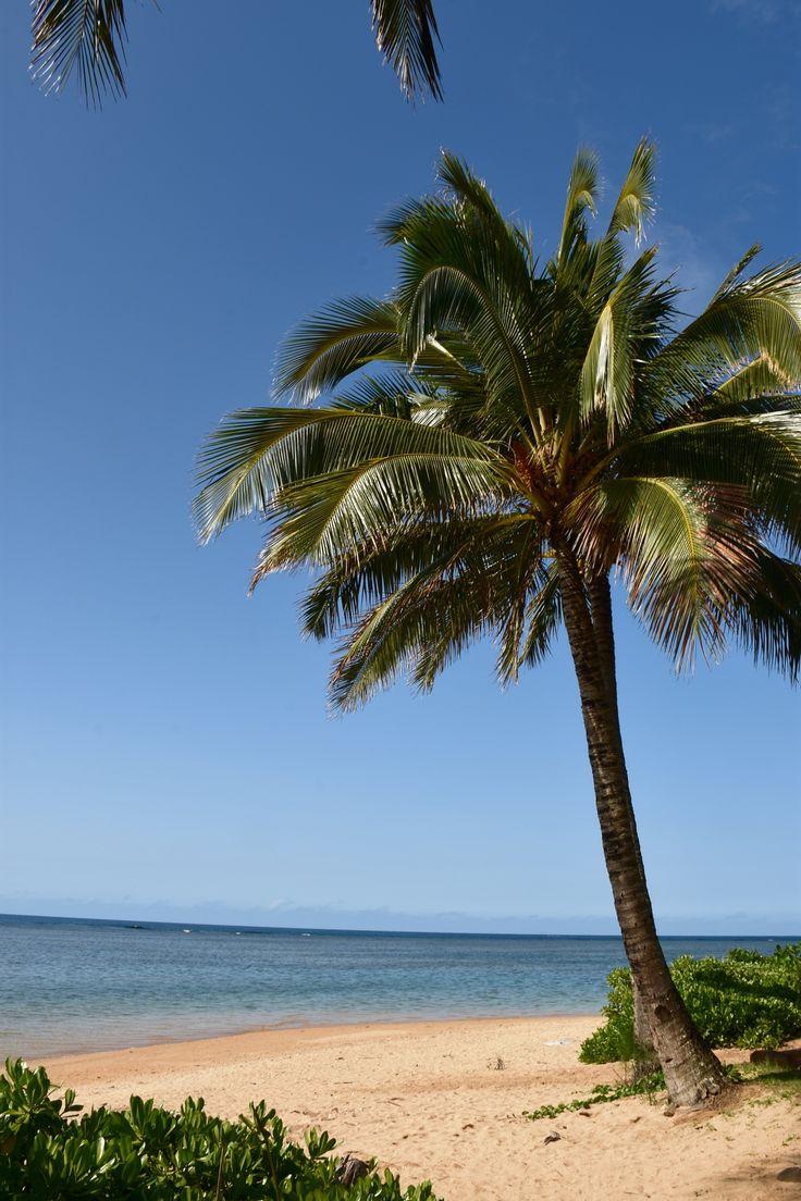 Nice Beach in Kauai , Hawaii