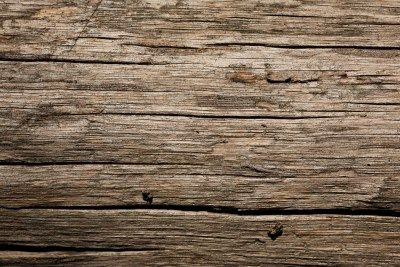 20 (FREE) BEAUTIFUL HI-RES WOOD TEXTURE WALLPAPER BACKGROUNDS - 06 Wild Texture