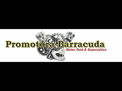 BARRACUDA FULL TUNE UP SERVICE EN UN JETTA VR6