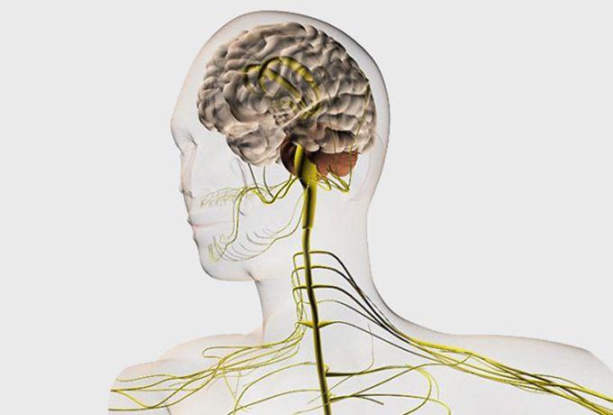 9 упражнений, которые заставят мозг работать на полную мощность
