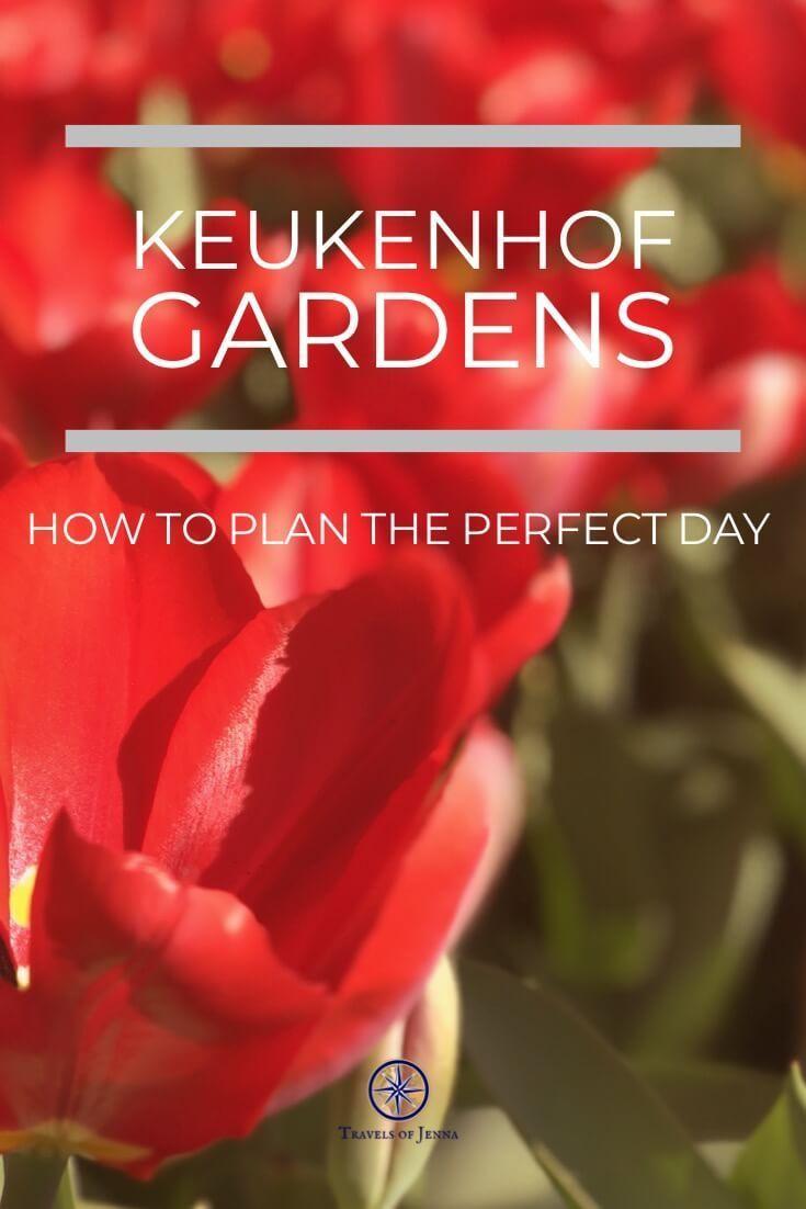 Tours From Amsterdam To Keukenhof Gardens