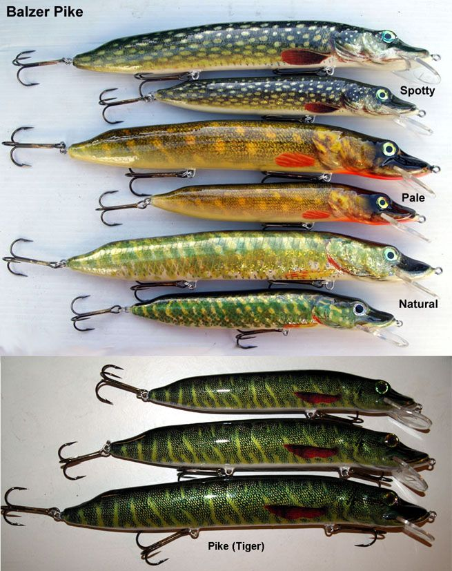 1000 ideas about pike fishing tips on pinterest pike for Pike ice fishing lures
