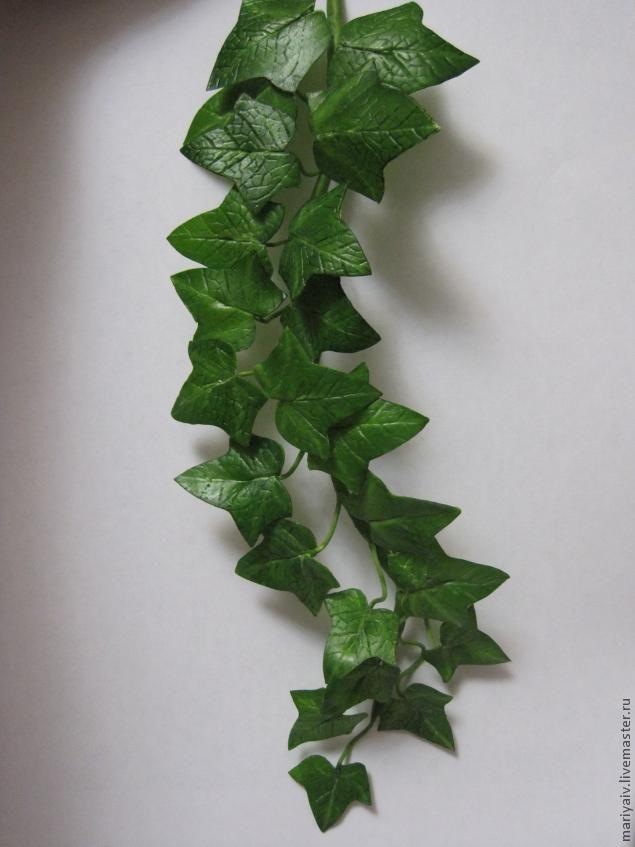 Плющ из полимерной глины (холодного фарфора) - Ярмарка Мастеров - ручная работа, handmade
