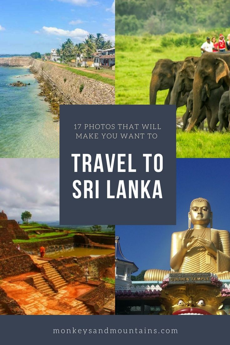 These photos will make you want to travel to Sri Lanka where wildlife, UNESCO sites, beaches, culture, food and friendly people await.