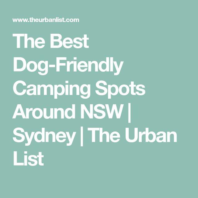 The Best Dog-Friendly Camping Spots Around NSW   Sydney   The Urban List