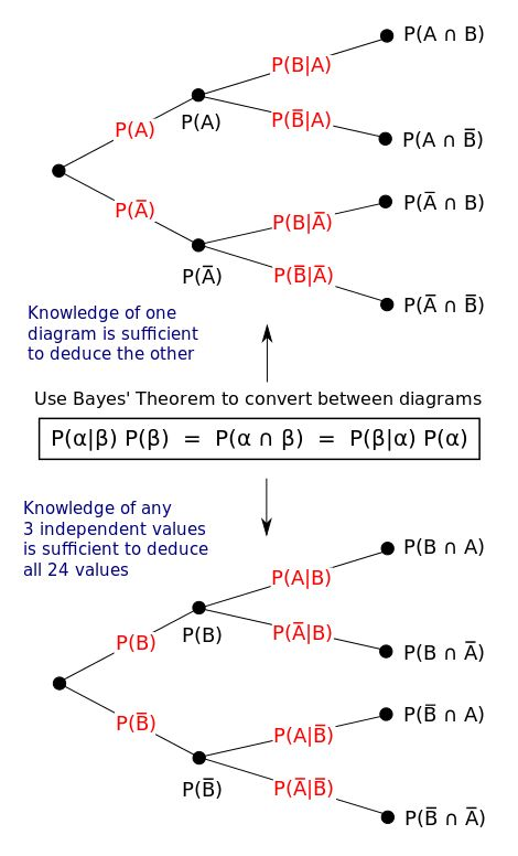 Bayes theorem tree diagrams - Bayes' theorem - Wikipedia, the free encyclopedia Illustration of frequentist interpretation with tree diagrams. Bayes' theorem connects conditional probabilities to their inverses.