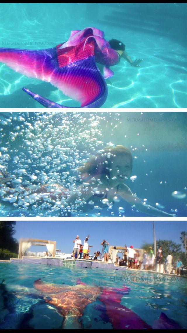 93 Best Images About Mermaid Performers On Pinterest Underwater Mermaids And Buses