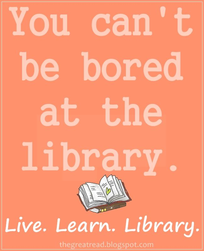Library Is Another Word For Adventure