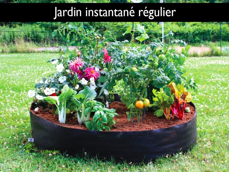 Smart Pot - Jardin instantané