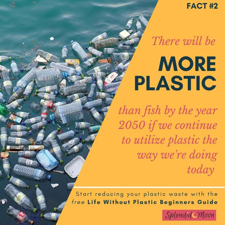 Plastic Facts 2 There Will Be More Plastic Than Fish By The Year