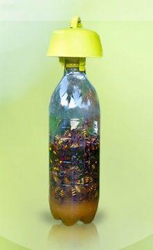 Tappo trappola per mosche, vespe e calabroni. #taptrap #tappotrappola #biotrappola