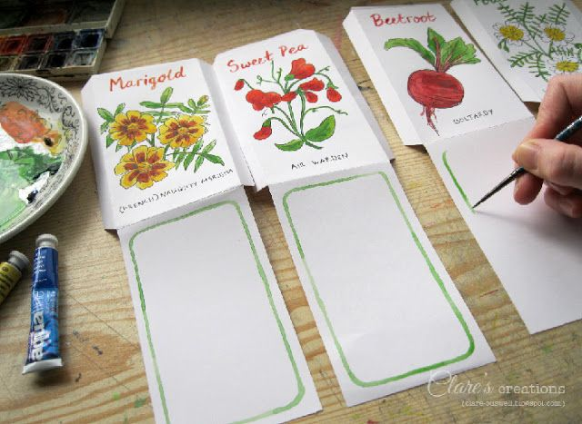 Clare's creations - Illustrated Seed Packets - Watercolour and black pen #seedpackets, #illustration