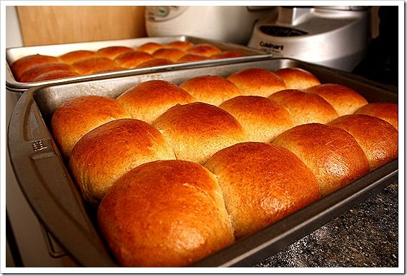Soft pull-apart rolls with sourdough starter or active dry yeast