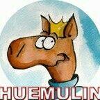 Huemulin Shop
