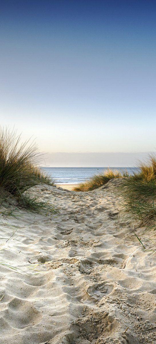 posterdepot Türtapete Türposter Weg durch die Dünen zum Strand am Meer - Größe 93 x 205 cm, 1 Stück, ktt0541: Amazon.de: Baumarkt