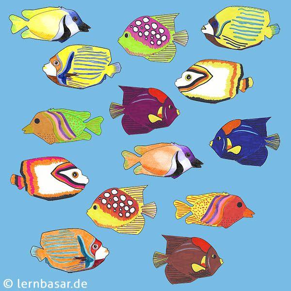 Exotische Fische für das Klassenzimmer