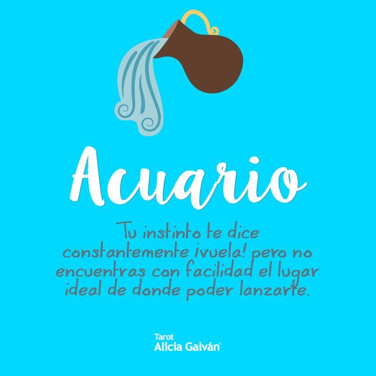 #Acuario ♒ ¿Aún no sabes lo que te depara Julio? Lee tu horóscopo en nuestra web