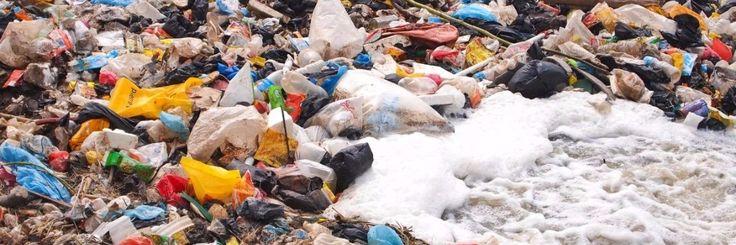 Over het algemeen is plastic ongelooflijk bestand tegen afbraak. Dat geldt zeker voor de triljoen polyethyleen plastic zakken die mensen elk jaar gebruiken. Onderzoeker