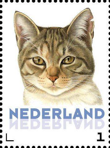 Stamp: Domestic Cat (Felis silvestris catus) (Netherlands - Personalized stamps) (Cats, Francine van Westering) Col:NL 2015-085