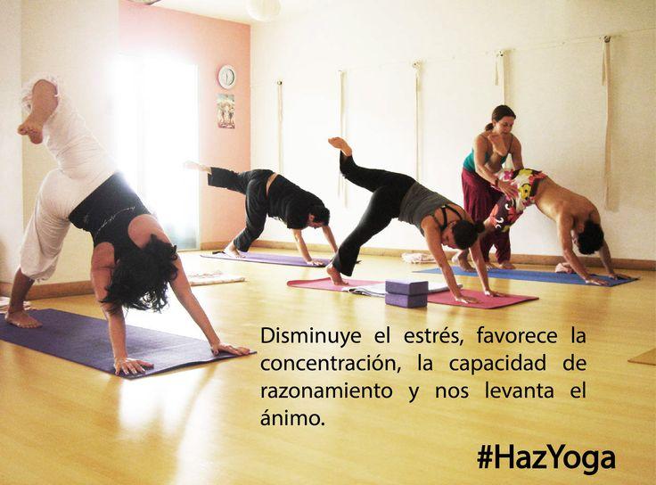 Si quieres estar menos estresado y más concentrado #hazyoga