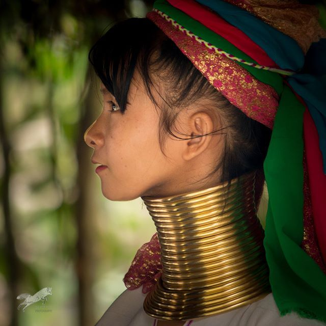 Another beautiful young lady from the #Karen #Longneck Tribe of Northern Thailand. Displaced from their homeland due to civilian unrest the Tai government agreed to provide these people with a plot of land although they are not actually Thai citizens. They rely on agriculture and tourism for their survival. Entrance to their village will cost you 500 baht or about $15 USD but you will have a unique opportunity to meet a unique group of people who are still steeped in their culture. - If you…