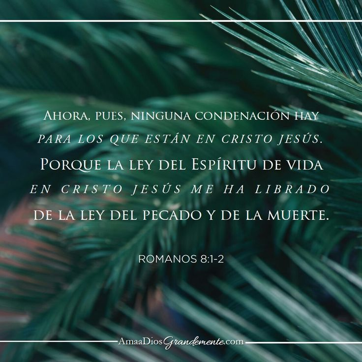 Versículo a memorizar semana 5 #AmaaDiosgrandemente #Mujersabia #Probervios #Estudiobiblicoenlinea #ADGenespañol #Dios #Devocionalparamujeres