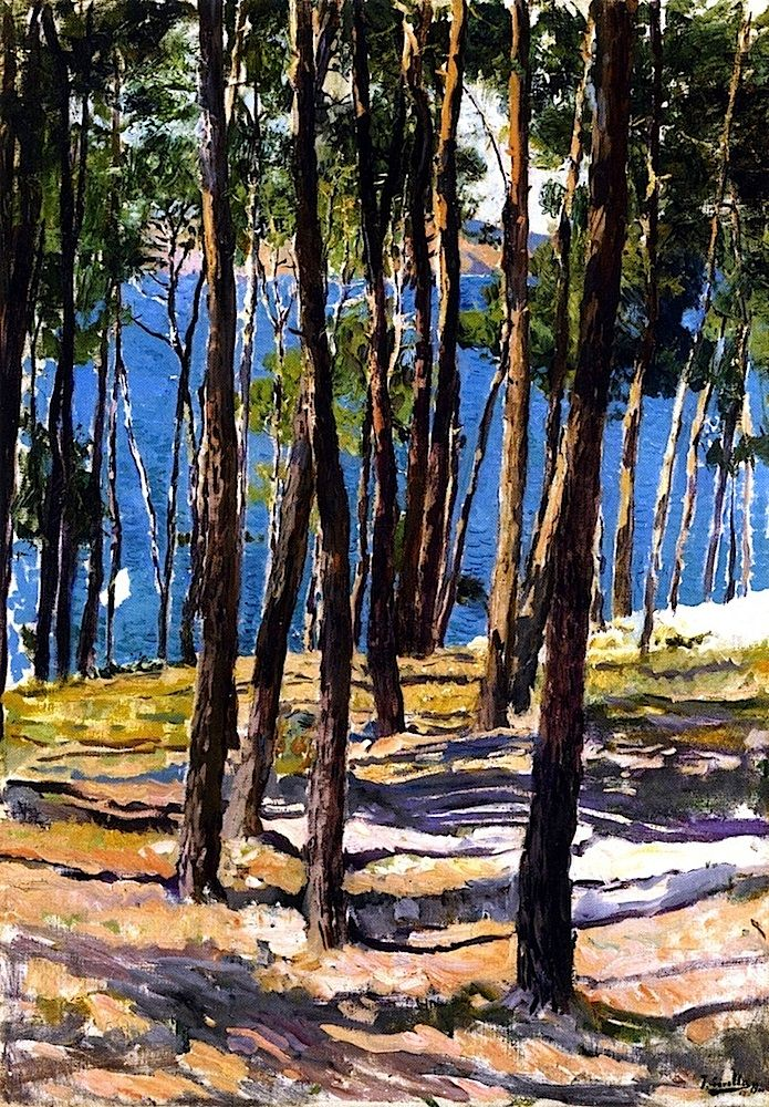The Pines of Galicia / Joaquin Sorolla y Bastida - 1900