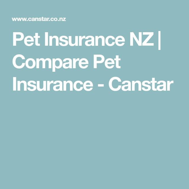 Pet Insurance NZ | Compare Pet Insurance - Canstar